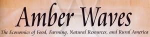 Amber-waves_Logo.jpg