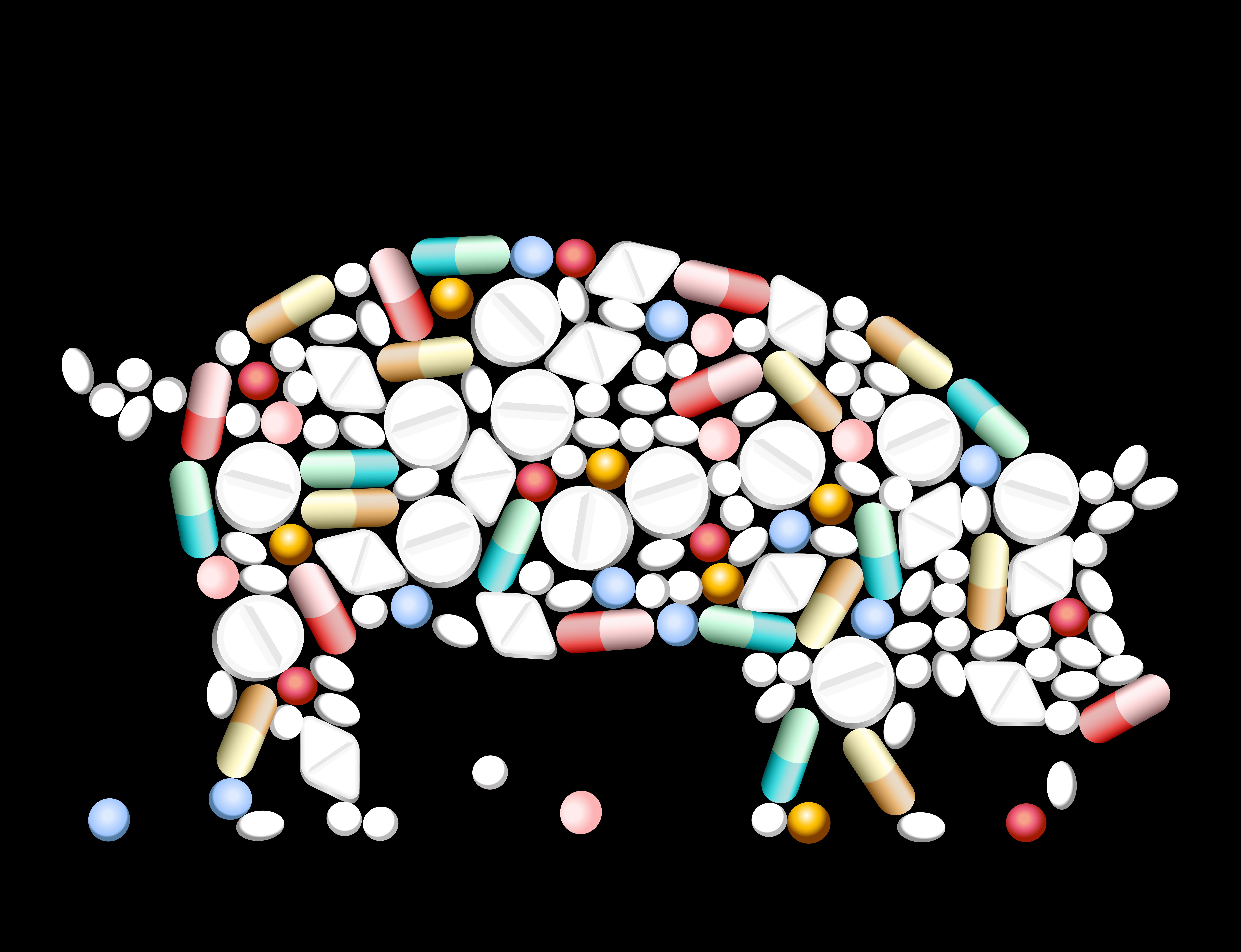 AntibioticsInYourMeat_WellnessWarriors.jpg