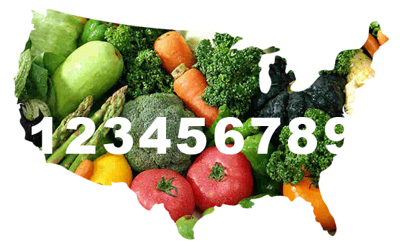 national_food_policy_art_9.png