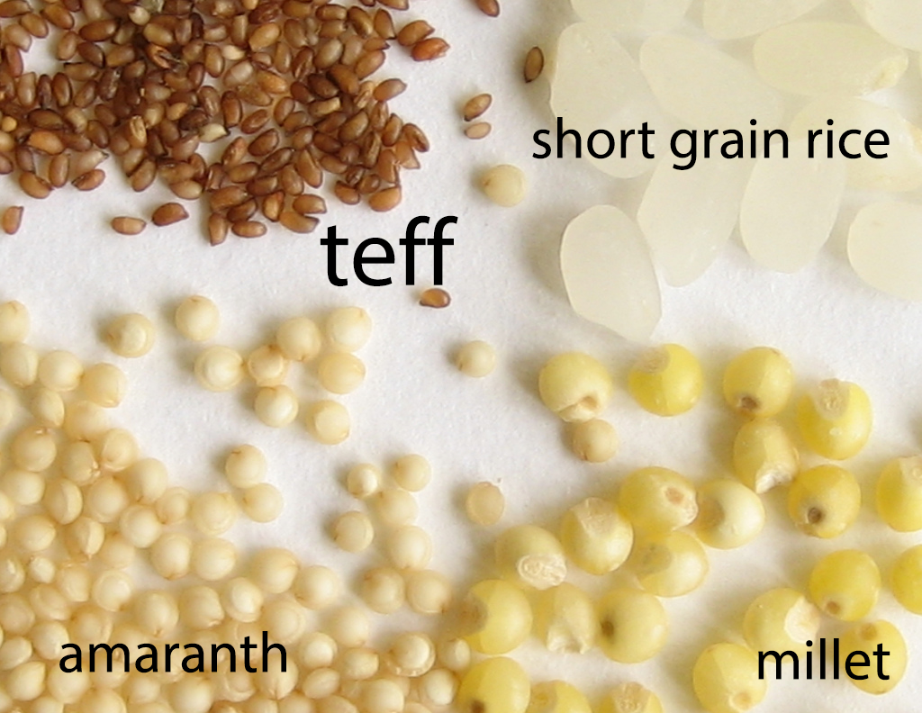 teff.png