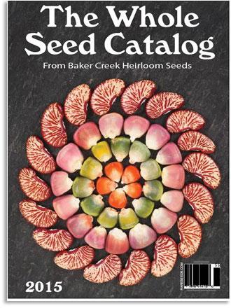 whole_see_catalog.jpg