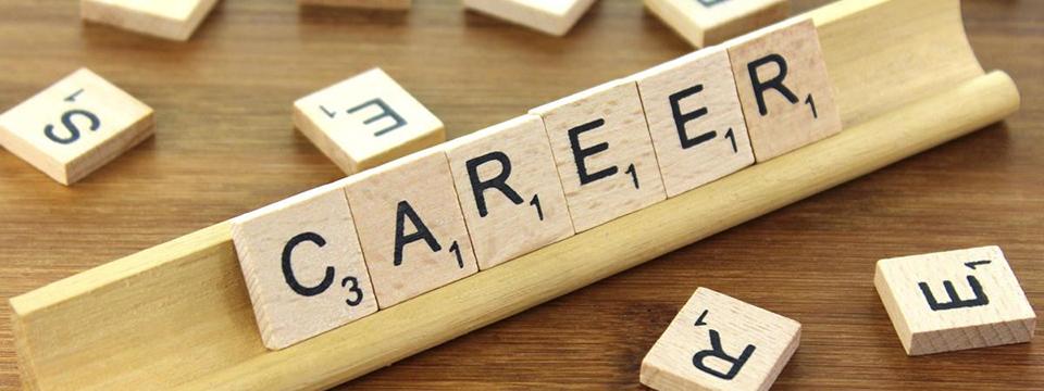career_960x360.jpg