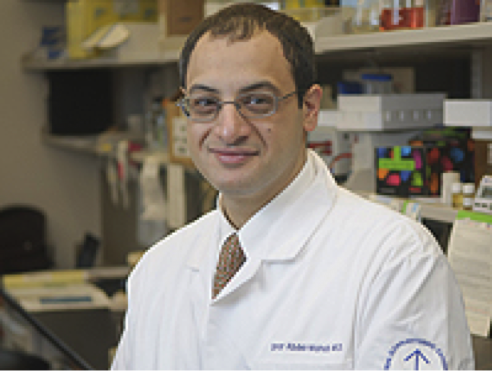 Dr._Omar_Abdel-Wahab.png