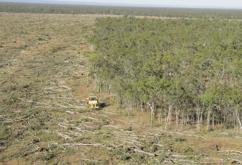 Landclearing-OliveVale-Snapshot000007.jpg