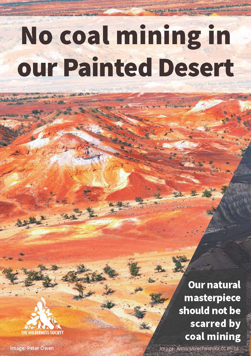 Painted_Desert_Brochure_Web_Page_1.jpg