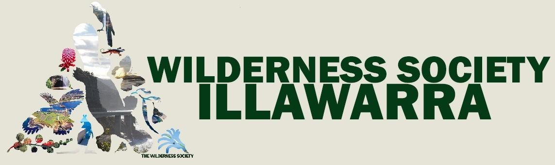 Illawarra Wilderness banner