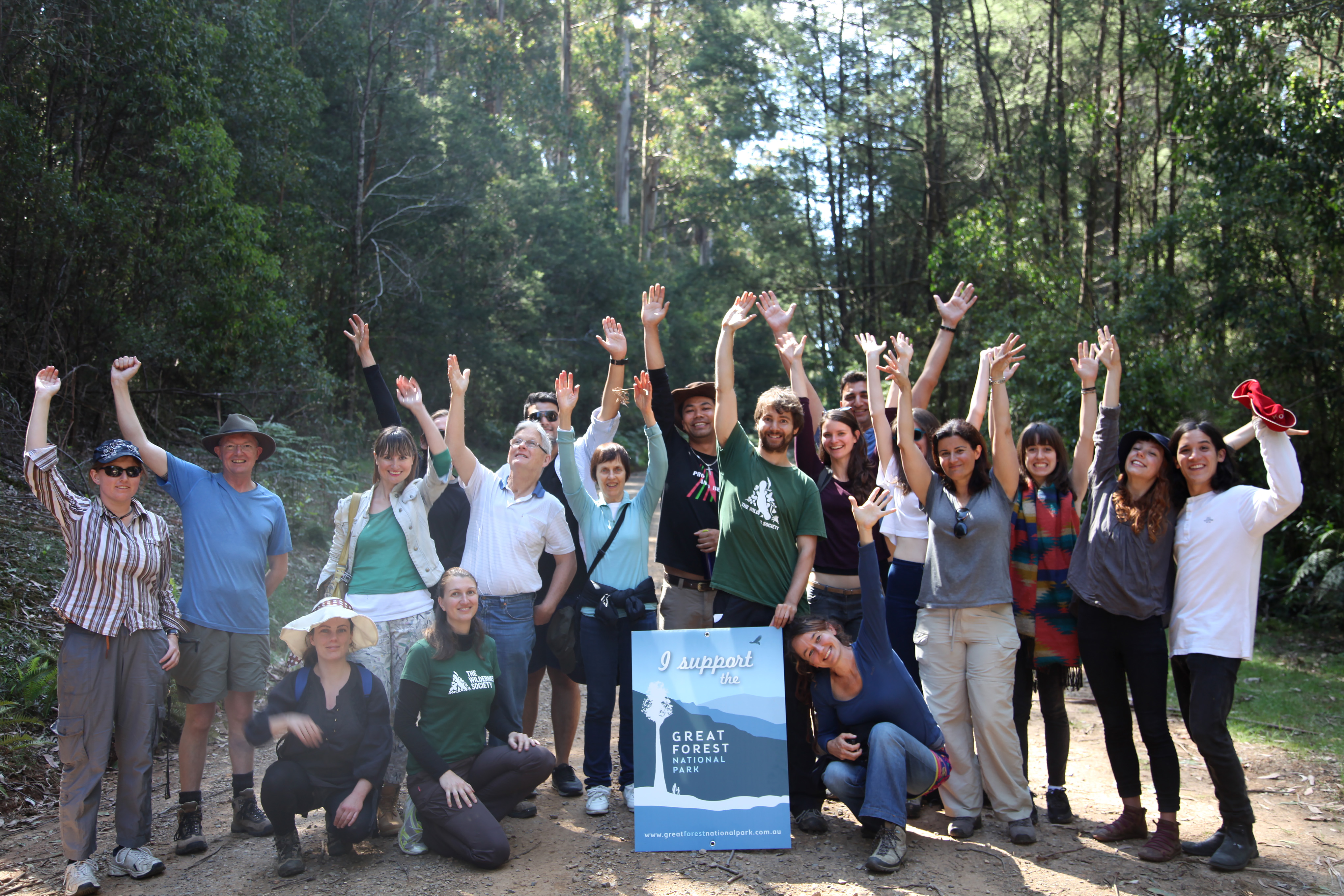 Forest_tour.JPG