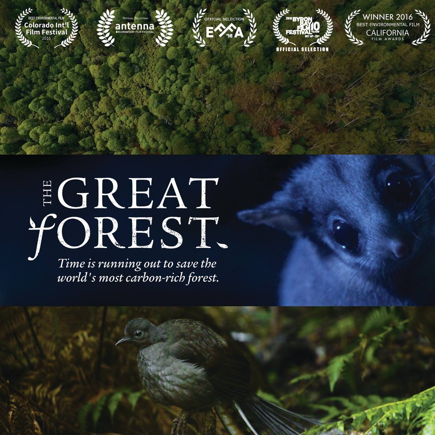 The_Great_Forest_cover.jpg