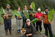 Alaska Volunteer