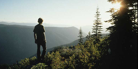 5)-person-hiking-wilderness.net-photo.png