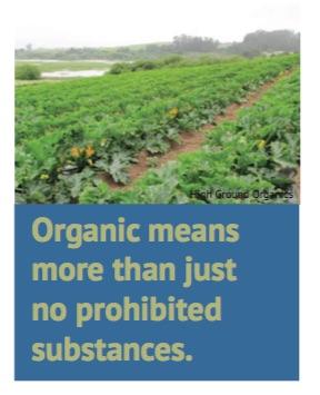 OrganicMeansMore.jpg
