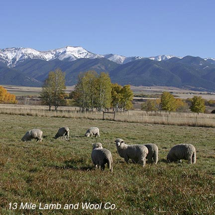 13_Mile_Lamb_and_Wool_Co.jpg