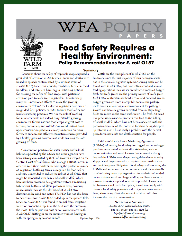 Food_safety_policy_paper_thumbnail.jpg