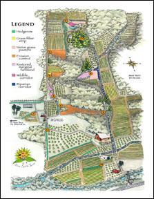 WFA-LEF-Map.jpg