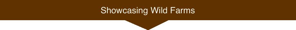 showcasingwildfarmsmed.png