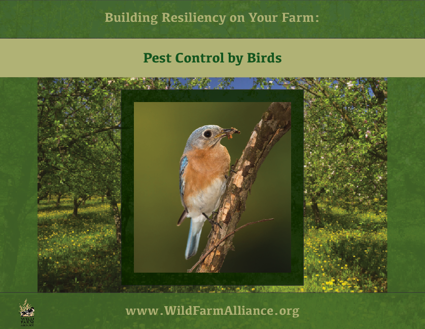 Cover-Pest_Control_by_Birds.png