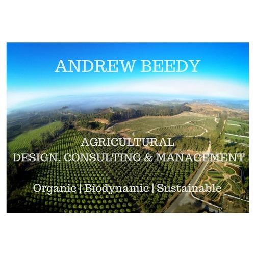 Andrew_Beedy_(1).jpg