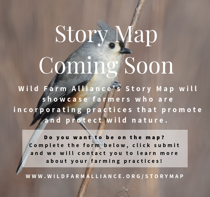 coming_soon__storymap.png