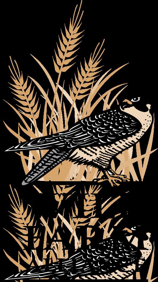 WFA_Logo-Color.png