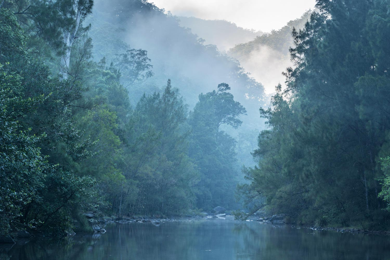 NSW great wilderness area at risk: expert  Image