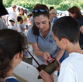 Jessica Cavanaugh, an educator at The WaterFront Center, shows a horseshoe crab to young Bay Day attendees.