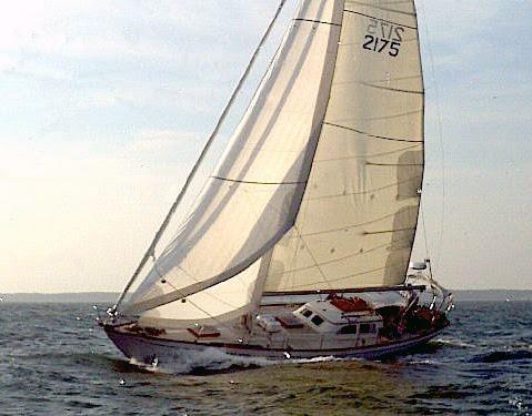 Hotspur II Marion Bermuda 2015