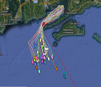 Tracker Marion Bermuda