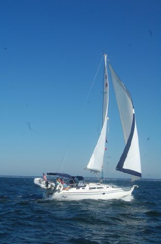 Catalina 35