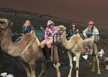 Camel Caravan Morocco