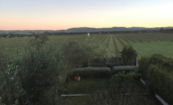 Waipara Winds Vineyard