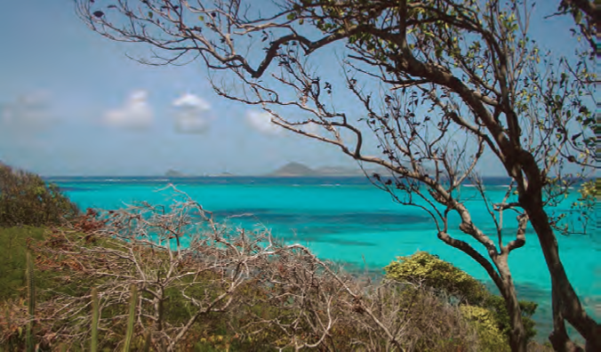 A view of the Tobago Cays from a small hill on Baradel © Nancy Kaull