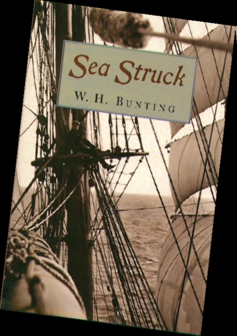 Sea Struck By W.H. Bunting