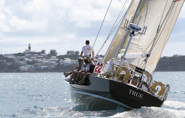 Newport Bermuda 2