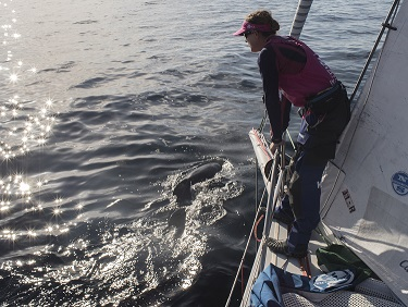 Volvo Ocean Race Team SCA 2 days out
