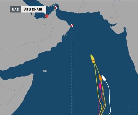 Volvo Ocean Race Positions Leg 2