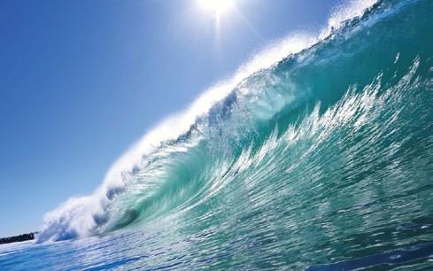 The Ocean's Future
