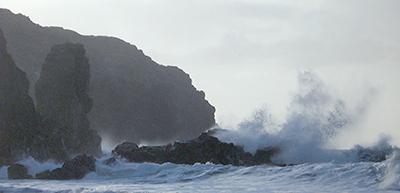 The Ocean Dances