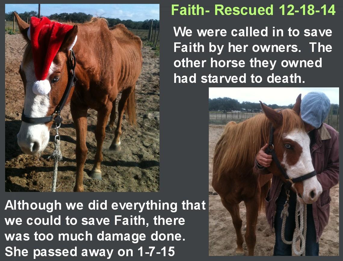 Faith_-_jpg.jpg