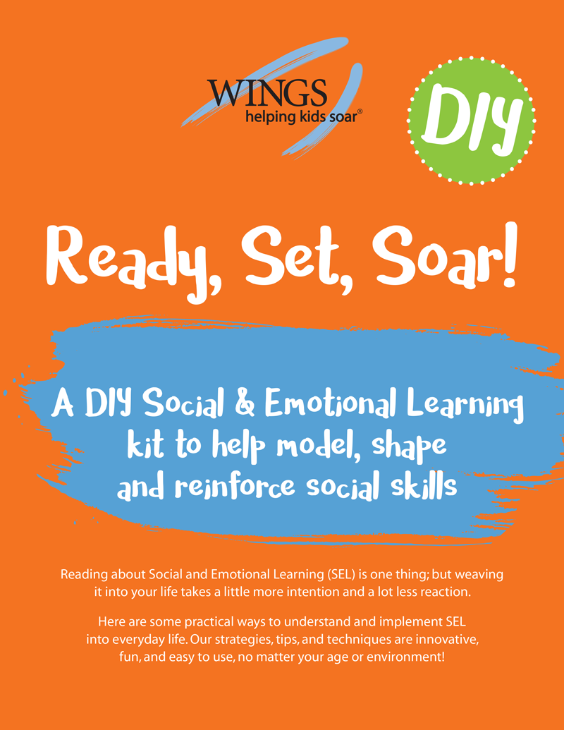 7-26-16_WINGS_DYI_Kit--ONLINE-1.png