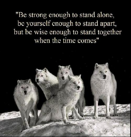 wolves-and-wise.jpg