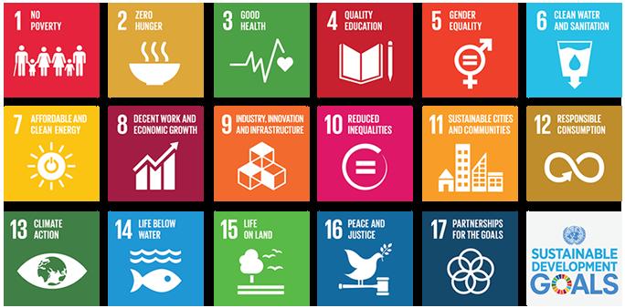 un_sustainbility_goals.png
