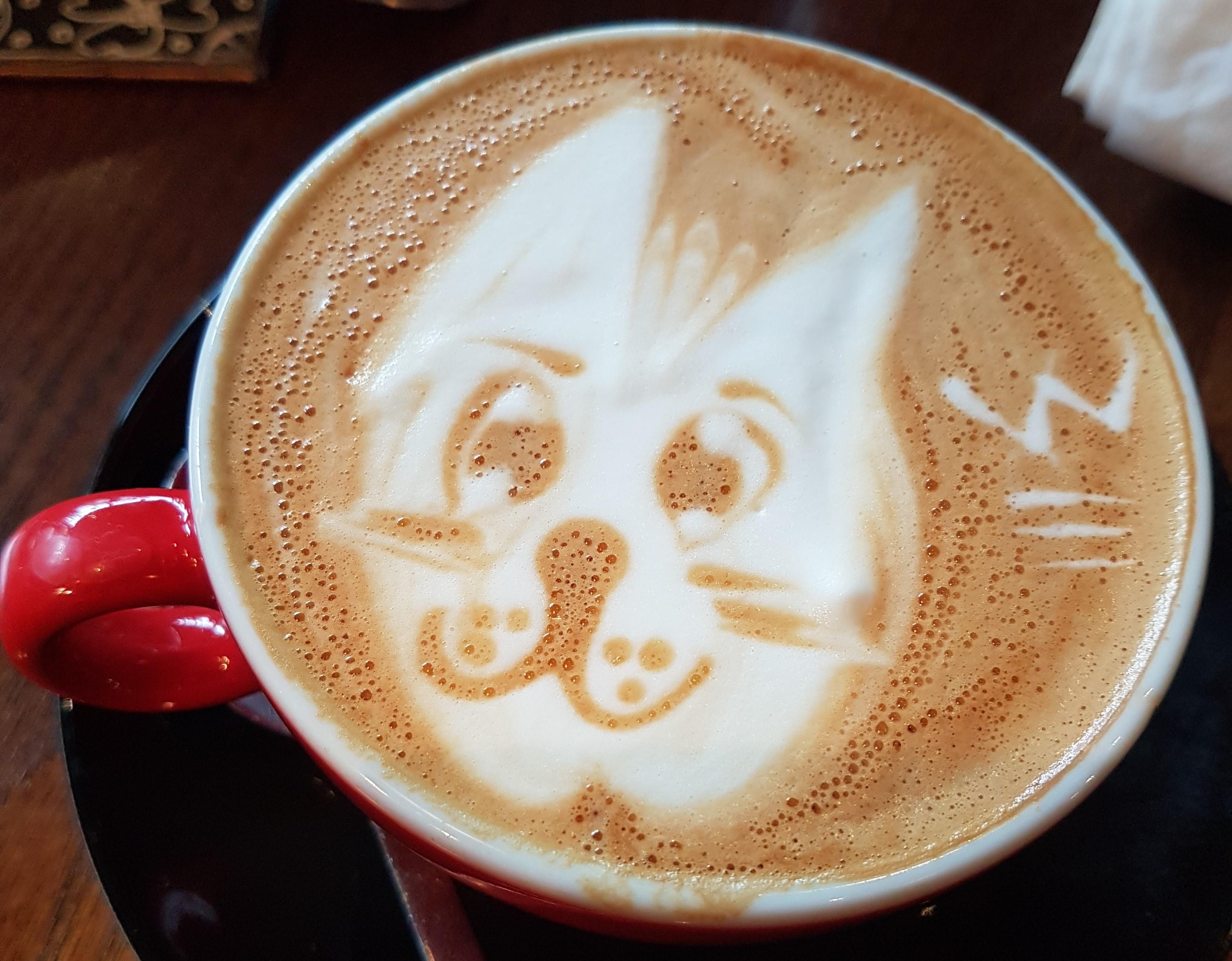 coffee_cat.jpg