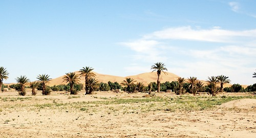 Morocco__1.jpg