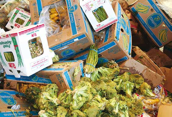 WFD_Food_Waste_image.jpg