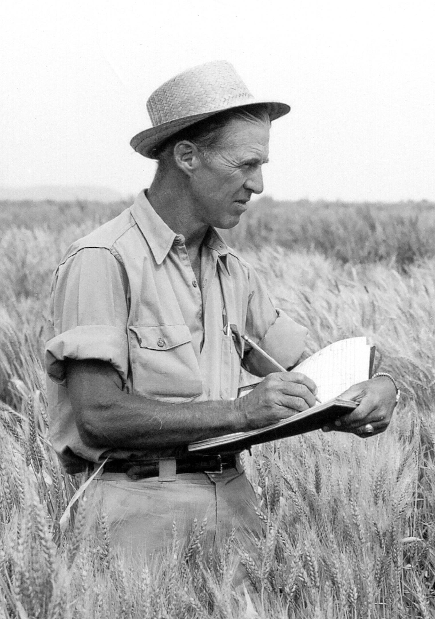 Borlaug-2.jpg