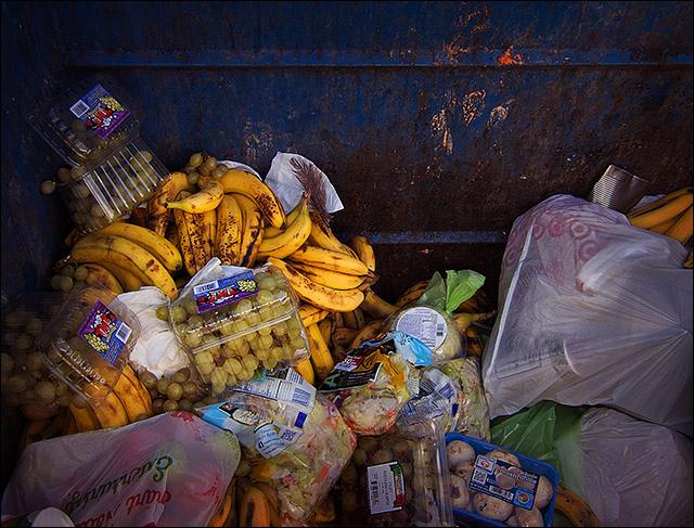 Bicycle_Fixation_Food_Waste.jpg