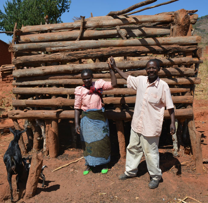 Mwandira_and_his_wife_Harriet_at_their_goats_kraal_thanks_to_family_farming_690_resized.jpg
