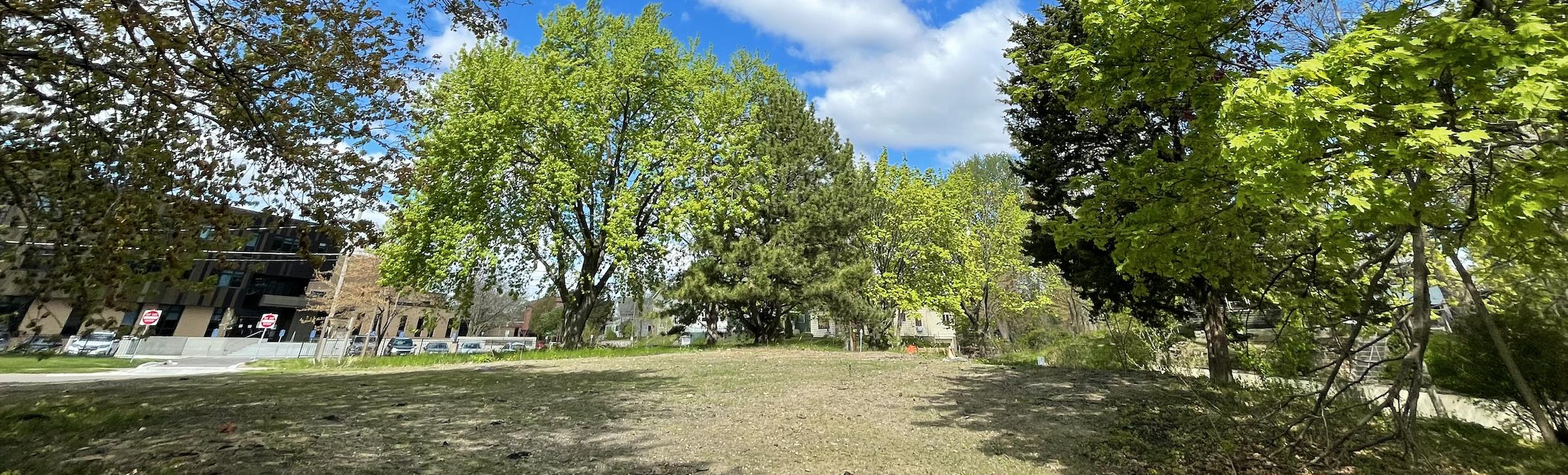 baker lot trees