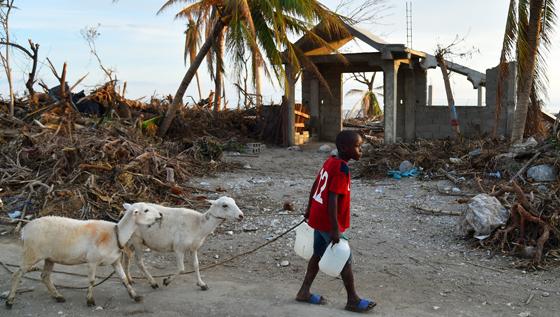 dm_newsletter_haiti.jpg