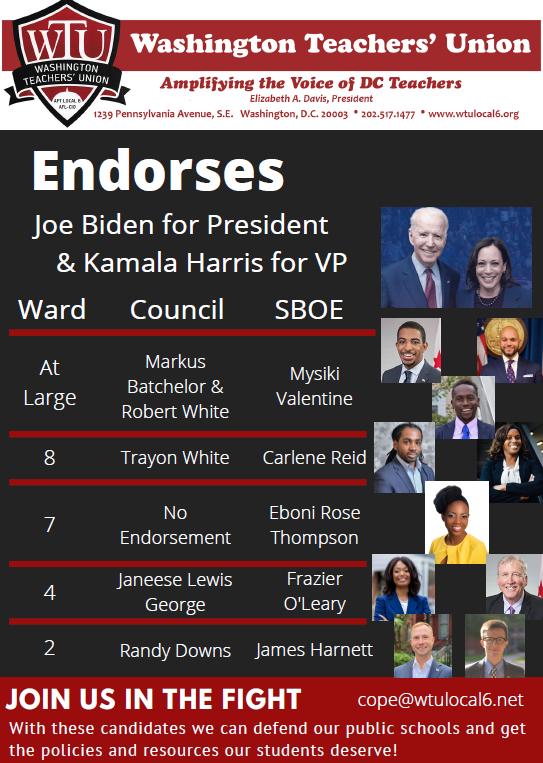 WTU_Endorsements_2020_General_Election.PNG